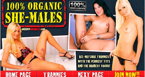 Greatest pay porn website if you like sex material with big cock transsexuals