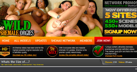 My favorite pay xxx website where I find the hottest ladyboy porn pictures
