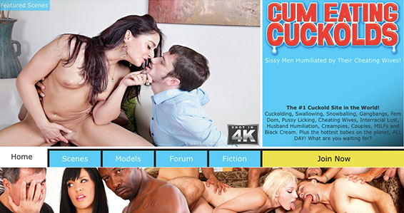 Top xxx site if you're up for some fine cuckold flicks